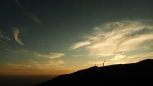 大きくなった小だぬき達 - 高峰温泉の四季の移り変わりを写真と一言コメントで楽しんでください。