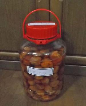 八助梅の梅干し&新生姜の梅酢漬け - 小町の日々の暮らし