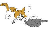 猫同士いつものこと - どこにでもいます