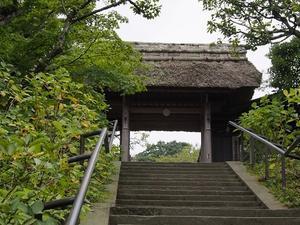 鎌倉東慶寺の花々 -