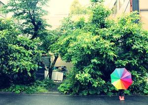 。。雨。。? - 思いのままに