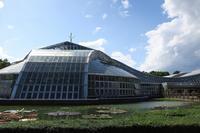 京都府立植物園へ - ウミネエブログ
