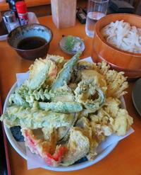 モリモリ天ぷらと美味しいおうどん * 麺處 一品香 @佐久 - ぴきょログ~軽井沢でぐーたら生活~
