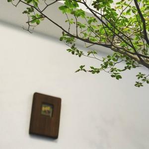 秋のチーズタッカルビクラス、デザートは・・・・ - 今日も食べようキムチっ子クラブ (我が家の韓国料理教室)