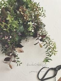 木葉月:はなの会 - つきくさ帖   草花とおして、毎日とくべつ