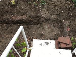 庭造り…その9 - いととはり