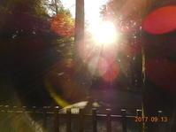 伊勢神宮ご参拝 - 葛飾区立石の占いサロン「オラクル」