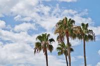 須磨海岸の暑い夏 - たんぶーらんの戯言