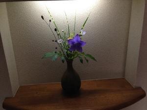 9月婦人会 - 押し花おばさんの気まぐれブログ