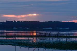 印旛沼の朝風景 - S-Photo