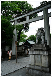 秩父神社 -1 - Camellia-shige Gallery 2