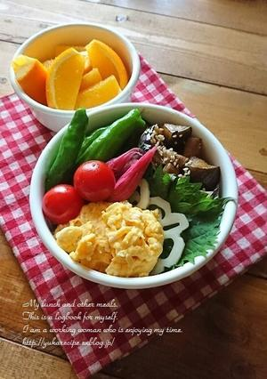 9.24 ナスと豚肉のっけ盛り弁当と『今日の美活』 - YUKA'sレシピ♪