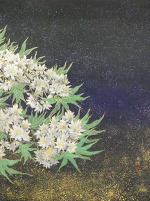 星屑の花たち  (Stardust flowers) - 栗原永輔ArtBlog.