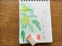 コスモスが咲く頃 - あずきのばあばの、のんびり日記
