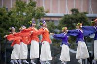 第3回良さ来い 茶ノ国祭り『華連榛原-かれん-』 - tamaranyのお散歩2
