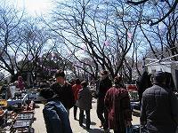 ■今月も恒例、浦和調神社骨董市(3月) - 陶芸ブログ・さるのやきもの