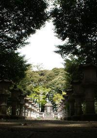 大山参道のモミジ並木と大山元帥墓所 - 烏ヶ森のブログ