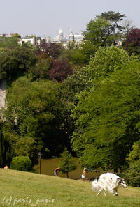 PARC DES BUTTES CHAUMONT 2 - いつものパリ