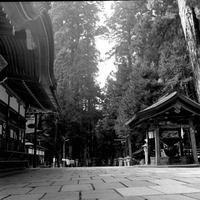 比叡山・高野山・熊野三山 - LUZの熊野古道案内
