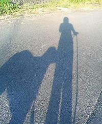 お散歩 - やさしい時間