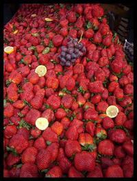 ■久しぶりのマルシェ(バスティーユ) - フランス美食村