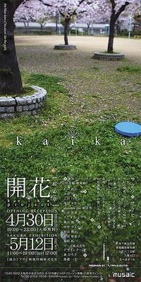 開花プロジェクト【桜の章】 開催中! - COSYDESIGN*COSYDAYS