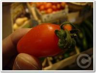 ■パール(真珠)トマトtomate perle - フランス美食村