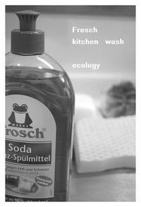 ドイツのエコ洗剤・・・フロッシュ♪ - hand ハンド ホーム