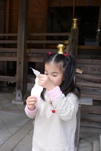 弥彦神社 - あるこう、あるこう