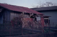 錆トタン小屋セラピー - 店長のガラクタ部屋