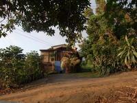 家のはなし - Hawaiian LomiLomi ハワイのおうち 華(レフア)邸