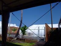 この1週間ハードでした - Hawaiian LomiLomi ハワイのおうち 華(レフア)邸