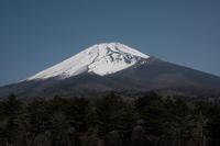富士山2 - 野鳥フレンド  撮り日記