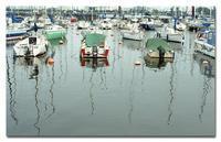 #2460ヨットハーバー - at the port