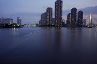 第22回東京湾大華火祭@永代橋 - デジカメ写真集
