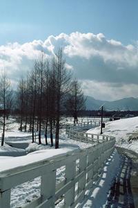 雪解けの・・・ - 空ノ畑 a day in the life ...