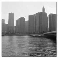 #2559埠頭より - at the port