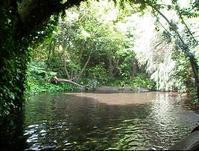 ディズニーランドVSボルネオ・ジャングルクルーズ - コタキナバル 旅行記・ブログ
