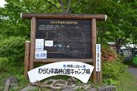 わらび平森林公園キャンプ場2011 - 楽しいことさがし