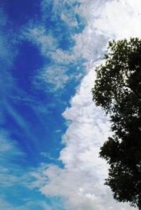 星野リゾート×ベネッセしまじろうと裏磐梯で夏休み!② - ハッピー・トラベルデイズ