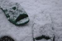 2012年の初雪 - 楽しいことさがし