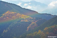 景信山→小仏城山→高尾山 その⑤ - 光の贈りもの