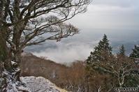 大山 その⑦2012年2月26日(日) - 光の贈りもの