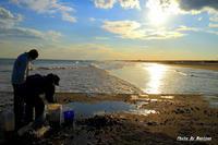 投網 2012- 03-19更新 - 夕陽に魅せられて・・・