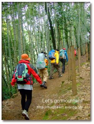 お山でヨガ企画☆11月は嵐山へ -