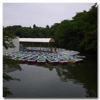 #2485ボート - at the port