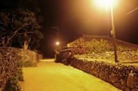竹富島の夜を歩く - あ お そ ら 写 真 社