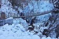 尾ノ内渓谷の氷柱@秩父小鹿野町 - デジカメ写真集