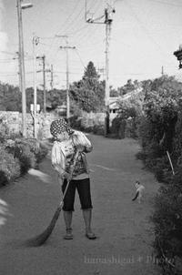 竹富島の朝 - あ お そ ら 写 真 社