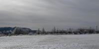 野辺山 - 野鳥フレンド  撮り日記